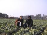 India 2003 © Agriversal Ltd