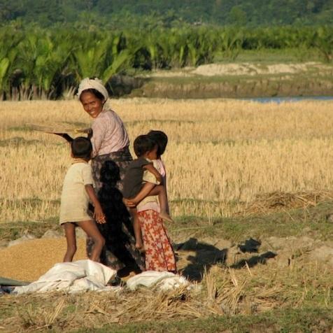Myanmar 2008 © Agriversal Ltd
